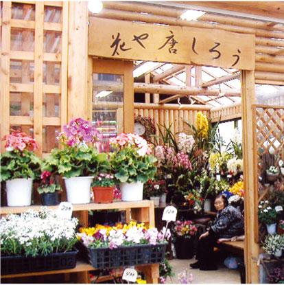 hanaya_toshiro.jpg