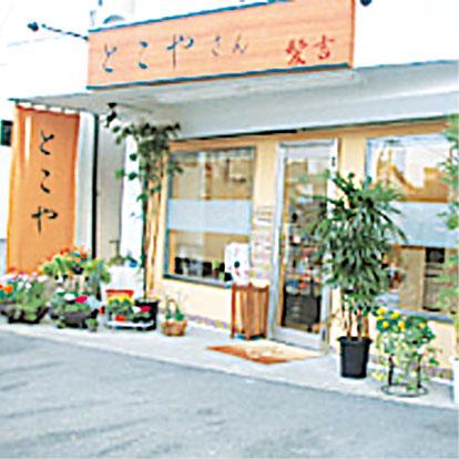 kamikichi.jpg